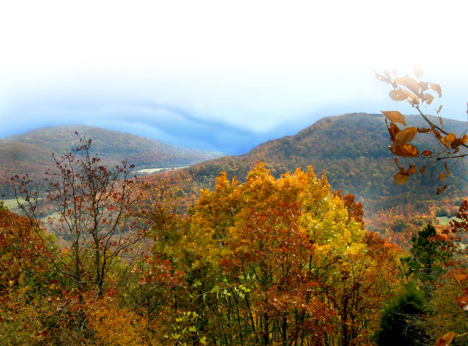 Hunting property in the ozark mountains in northwest arkansas combs - Return To Top Of Page